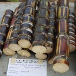 Sugar cane cut and ready to be exchanged